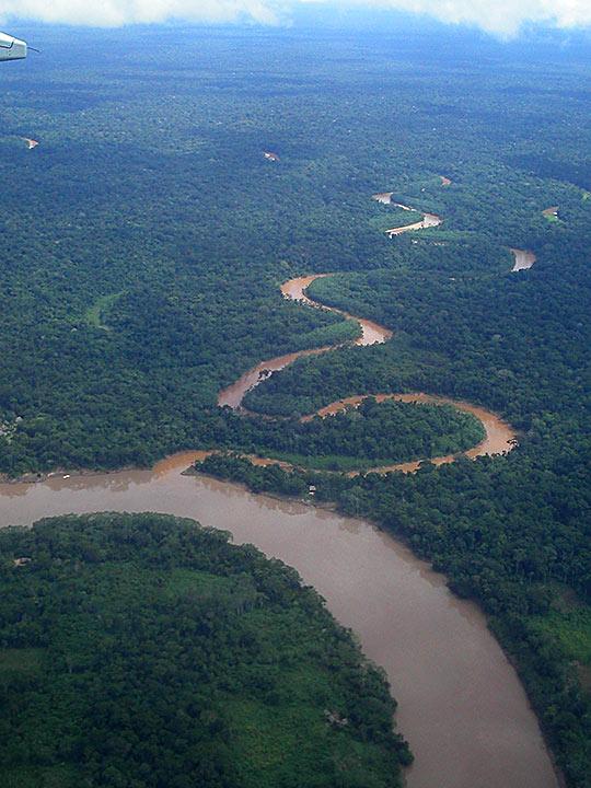 Forêt Amazonienne, Peru / Blaise Fiedler