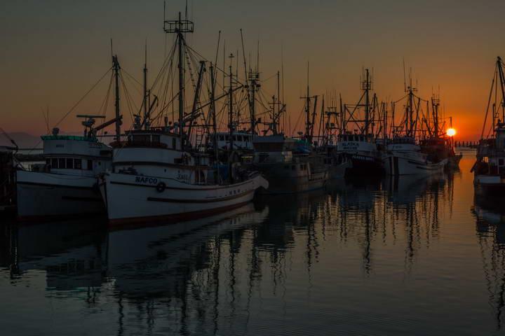 Sunset-Blue_hour-Steveston_British_Columbia