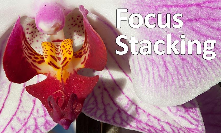 Focus Stacking prise de vue et post production