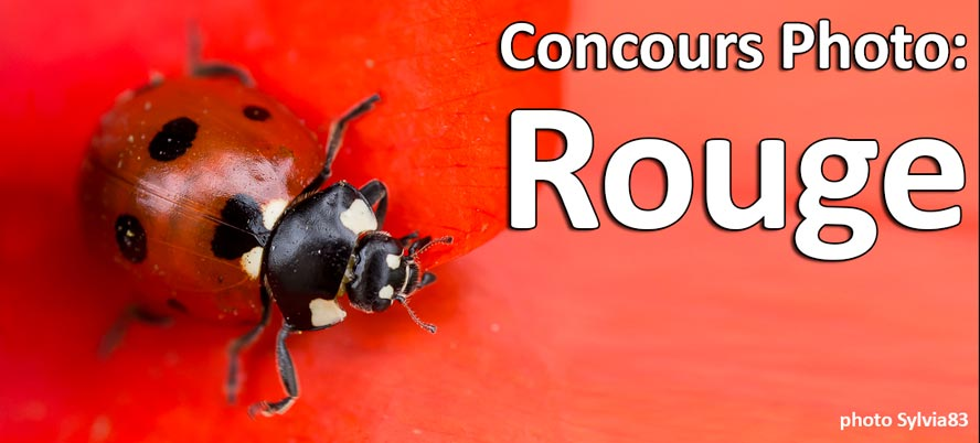 Concours Photo Rouge