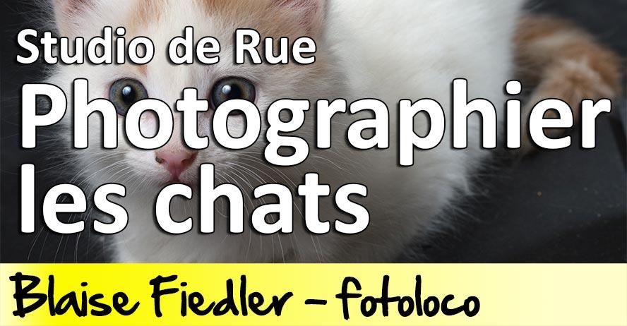 Photographier ses chats en Studio de Rue - Cours Photo Gratuit
