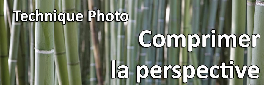 Comment comprimer la perspective en photo compression perspective