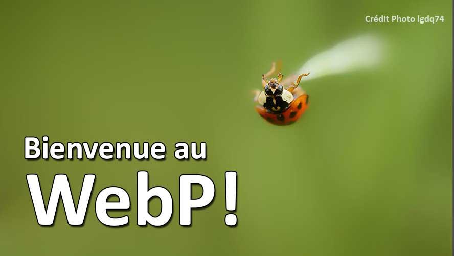 bienvenue-au-webp