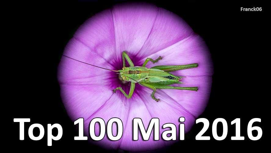 Top 100 Mai 2016