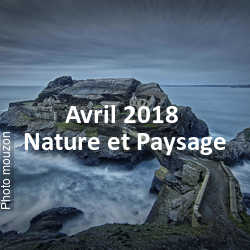 fotoduelo Avril 2018 - Nature et Paysage