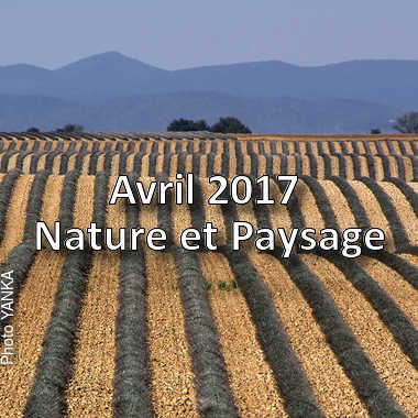 fotoduelo Avril 2017 - Nature et Paysage
