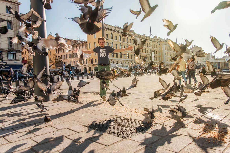Concours Photo - Oiseaux - les oiseaux par Jeremy_7517