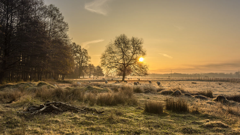 fotoduelo 2ème trimestre 2021 - Nature et Paysage