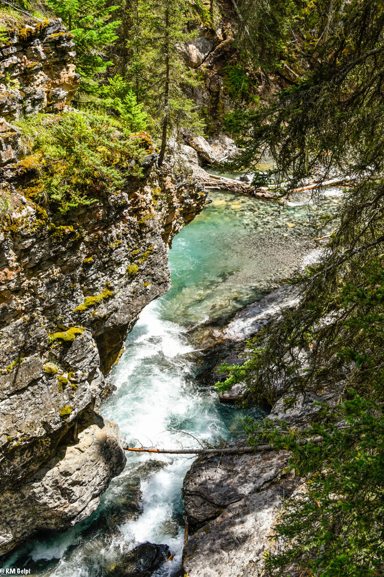 au long du Johnston Canyon