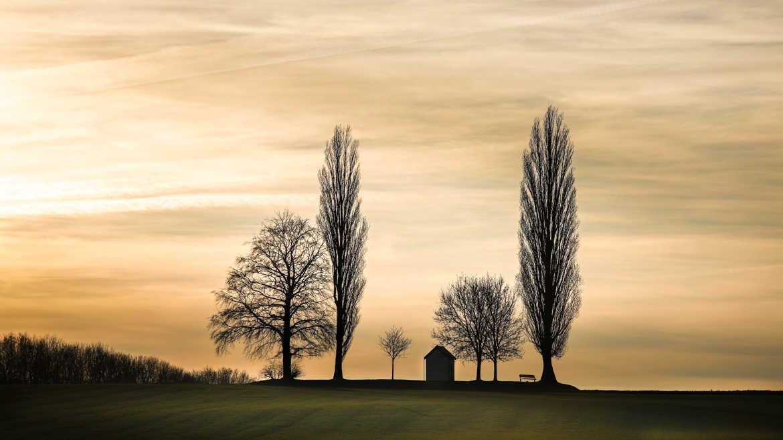 fotoduelo Tout 2019! - Nature et Paysage