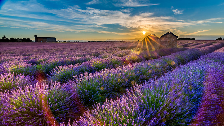 fotoduelo Août 2017 - Nature et Paysage