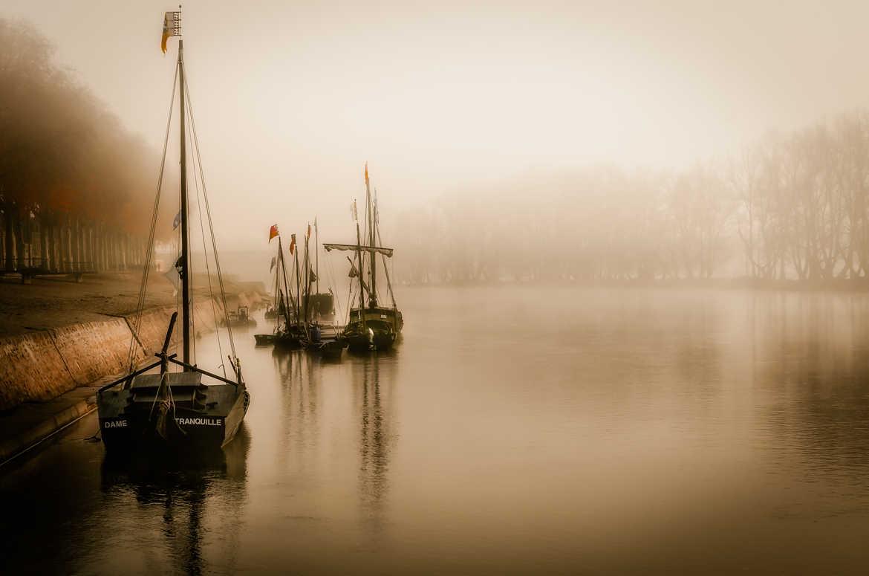 Brume sur Loire