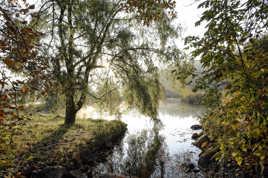 La brume d'automne laisse place au soleil