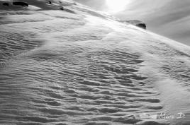 Chantilly, neige ou sable?
