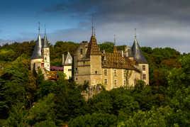 Nid d'aigle en Bourgogne