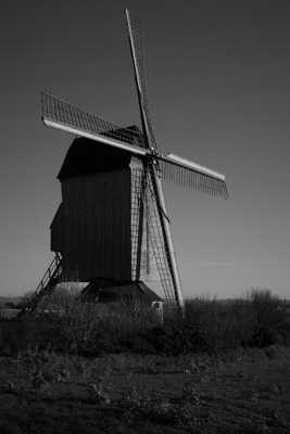 Noordmeuln - Steenvoorde (59)