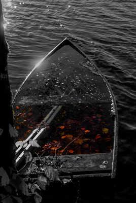Barque d'automne