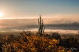 Petit matin sur la campagne navarraise