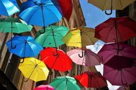 Les parapluies d'Avignon
