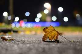 Le symbole de l'automne