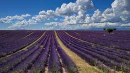 Ciel de Provence.