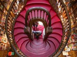 Les escaliers de la librairie