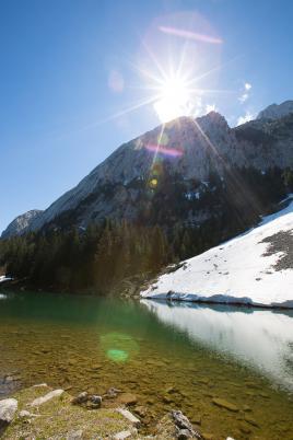 Surgit de la Montagne