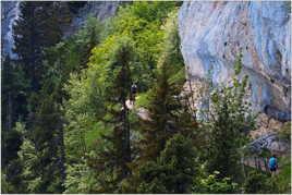 Le sentier alpin