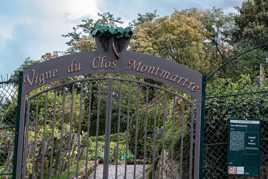 Entrée Vigne du Clos Montmartre