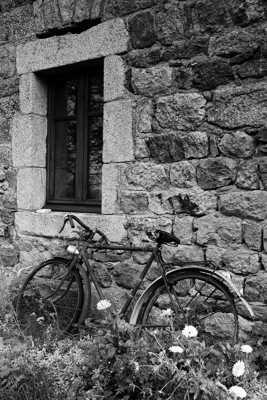 Vélo champetre
