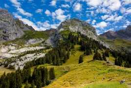 Silence et quiétude dans les Alpes