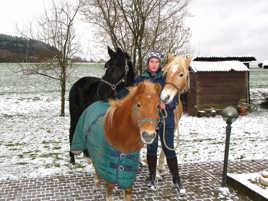 Clo et ses chevaux