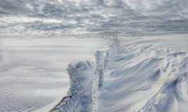 Blancs en neige givrés