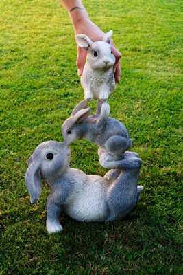 poser un lapin