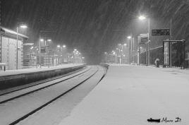 Tempête de neige en ville