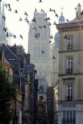 Vol au dessus de la ville