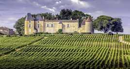 Château Yquem - Sauternes
