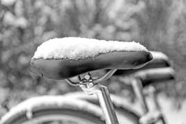 VICTORIA (Canada) sous la neige.(Tamron 24-70 mm f2.8)
