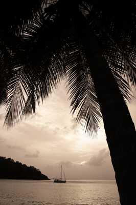 Petite plage en Martinique