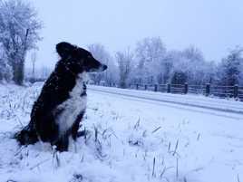 Sous la neige de Normandie