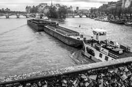 Les géantes de la Seine