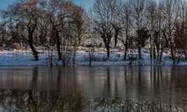 Dégel de l'étang