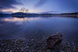 Edge of Lake Wanaka