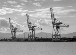 Géantes du port