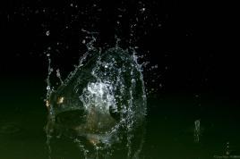 Une pierre jetée à l'eau