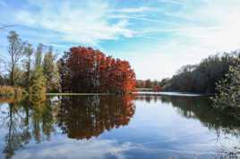 Reflets d automne