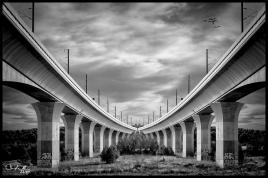 Bi-pont