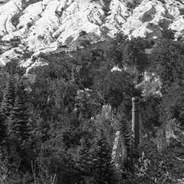 De cheminée en arbres