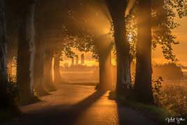 Un matin lumineux