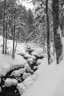 Rivière dans la neige